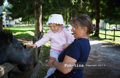toddler girl with her grandmother caressing a horse - bassano del grappa - Italy (Fon-tina) Tags: family summer people italy horse baby tree cute field childhood standing outdoors togetherness holding women toddler europe italia day estate emotion famiglia persone granddaughter beb pony innocence sharing campo donne females copyspace albero insieme cavallo twopeople bonding nonna vicenza courage uncertainty giorno neonate bassanodelgrappa paura casualclothing carino oneanimal tenere babygirls ruralscene duepersone innocenza pickingup infanzia coraggio emozione bambinopiccolo abbigliamentocasual sollevare caucasianappearance condividere multigenerationfamily scenarurale donnemature ambientazioneesterna stareinpiedi legameaffettivo adultoinetmatura nipotefemmina soltantounanimale 1223mesi 1223month