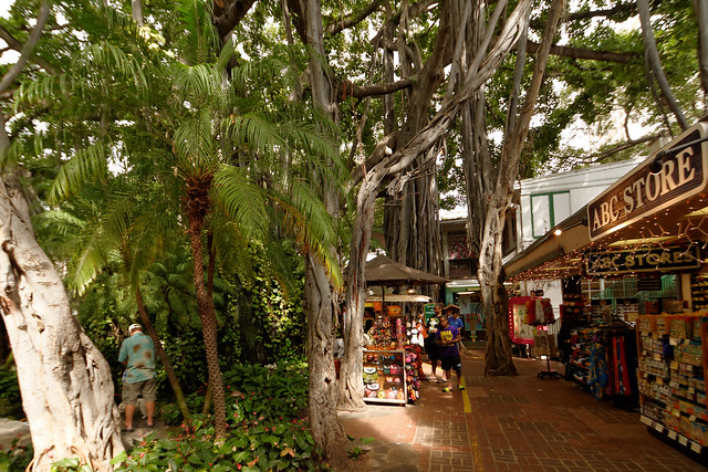 International Marketplace - Waikiki