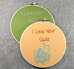 I Love Your Guts Valentines Day Gift. Anatomical Embroidery Hoop Art. (Hey Paul Studios) Tags: art hoop embroidery anatomy valentinesdaygift hoopart medicalart iloveyourguts giftforbestfriend valentinedaygiftforgirlfriend