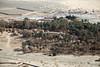 Oasis de Kâf (Délirante bestiole [la poésie des goupils]) Tags: abandoned ruins north middleeast oasis archeology saudiarabia archéologie jordanianborder arabiesaoudite qurayat kâf