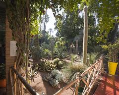 marrakech1 107_1 (Une photo mineure) Tags: voyage africa sun sahara holidays el arabic maroc bahia backpack atlas marrakech majorelle medina menara touristic koutoubia badi jamaaelfna fna marakech maroco bagpack jamaa