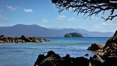 Tamihau Island from Boulder Beach (Tomas Sobek) Tags: ocean blue sea newzealand holiday tree water rocks remote framing boulderbeach stewartisland ulvaisland tamihauisland