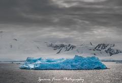 Blue iceberg V (Ignacio Ferre) Tags: blue ice azul antarctica iceberg hielo antrtida