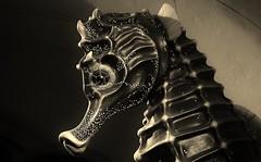 The Seahorse (Explore Feb. 13th 2014) (tieulinhclc - Thanks for 2 million + views) Tags: bw chicago statue aquarium illinois seahorse il nationalgeographic sheddaquarium bwpicture dazzlingshots dlphotography dandlphotography