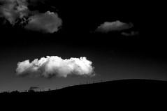One white cloud (Torsten Reuschling) Tags: sky blackandwhite bw clouds contrast dark landscape wolken sw düsseldorf landschaft infra dunkel schwarzweis mygearandme mygearandmepremium mygearandmebronze sonyslta57