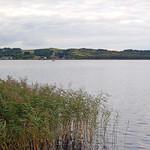Zicker See bei Klein Zicker auf Rügen (3) thumbnail