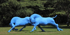 "Sane de STALH  ""Cavalcade"" (Thethe35400) Tags: sculpture horse animal caballo cheval skulptur escultura animaux estatua cavallo cavalo tier animalart scultura faune scukpture dealbhireacht"