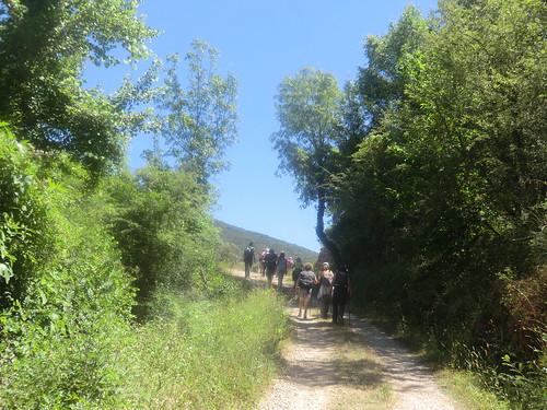 Fotografía Paquita Valdi Marcha 391 27 y 28 de Junio Parque Natural de la Encina de Lastra Ourense 2 (16)