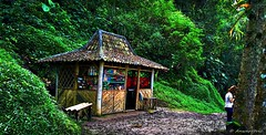 Stall (Anwarrovic) Tags: wood mountain plant green architecture forest landscape human environment malang grupoolhandoomundo lookingattheworldgroup