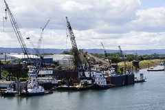 Tugboats, Portland Oregon. (Alvin Harp) Tags: oregon portland columbiariver tugboat
