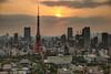 tokyo tower (dadiolli) Tags: japan tokyo worldtradecenter 日本 tokyotower 東京 hdr 東京タワー tokio seasideobservatory