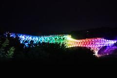 Toutes les couleurs de l'arc-en-ciel (- Ali Rankouhi) Tags: park bridge light summer nature water colors night dark fire rainbow iran couleurs tehran          2015 larcenciel 1394