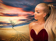 Girl 004 and lonely Desert Tree (IP Maesstro) Tags: painting girl teen woman sexy sunset desert sunrise lonelytree tree blonde shadow ipmaesstro