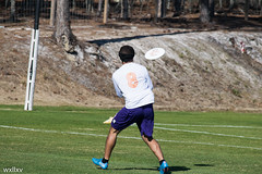 High Tide Day 3 (William Koenig-Vinicombe) Tags: ultimate frisbee sports teams athletes athleticism contrast color black and white friends