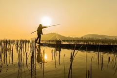Catching fish under sun light (leminhnguyet7174) Tags: sunlight buonmethuot catchingfish sunrise fisherman fishing lake laklake landscape vietnam