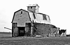 Rural Scene (forestforthetress) Tags: barn rural deterioration ruraldeterioration bw blackandwhite omot nikon outdoor monochrome