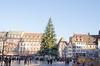 Sapin de Noël de Strasbourg (Zéphyrios) Tags: strasbourg alsace d7000 nikon marchédenoël noël placekléber sapin guirlandes décorations cadeaux chalets lumières vinchaud