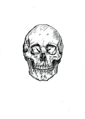Skull (Katya_Bariudin) Tags: black art ink death skull sketch etching