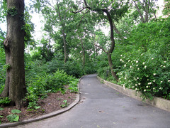 Morningside Park, 7:45 a.m., 6 June 2013 (jschumacher) Tags: nyc morningsidepark