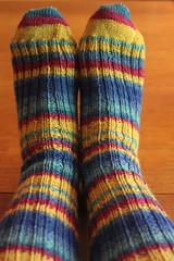 168/365: Sock Success! (jchants) Tags: socks stripes knitted day168 selfstripingyarn toeupsocks project365 168365 woolnylonblend srkertzeronyourtoes4plywithaloevera straightupsocks kelieorebpattern yellowbluemagenta