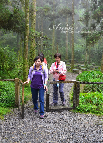 福山植物園_024.jpg