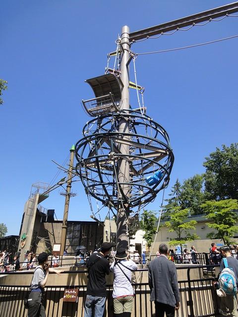 旭山動物園オランウータンのもぐもぐタイムと巨大な運動場|旭川市旭山動物園