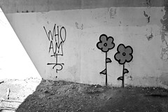 Who Am I? (damonabnormal) Tags: street city urban streetart philadelphia graffiti nikon tag july tags tagged urbanart pa philly graff aerosol phl tagger tagz 2013 streetwriters philadelphiagraffiti d7000