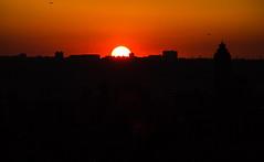(Digital_trance) Tags: sunset 20d canon landscapes dusk taiwan sigma 101 taipei nightscene taipei101   skycraper        70d 40d canon40d 5dmarkii 5d2  5dii canon5dmarkii eos5dmarkii  canon5d2 canon5dmarkiii 5d3 beautyoftaiwan canon70d 5diii