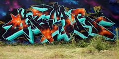 IN THE WEEDS (ALL CHROME) Tags: streetart money sucks pogs 2009 kemer kem poorjudgement nomdeguerre ironlak allchrome kem5 momsbasement