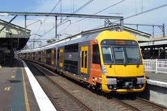Newest In The Fleet (jamesmp) Tags: australia newsouthwales emu waratah strathfield localtrain cityrail electrictrain electricmultipleunit sydneytrain railcorp downeredi downergroup railcorpnetwork