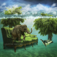 the green room (Martine Roch) Tags: ocean sea elephant tree nature water animal square underwater dream surreal sofa imagination pinguin underwaterdream