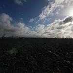 Schwalingen - Ackerscholle thumbnail