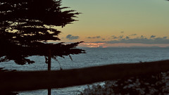 (W! st.) Tags: chile arbol atardecer mar w v cielo nubes cruces rgb region mirador tierra alanwlabb vision:sunset=0514 vision:ocean=0596 vision:outdoor=0882 vision:sky=081 vision:clouds=0691