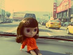 3/365 On the road (The Dutchlady) Tags: public doll stock january bad pop panasonic blythe zo 2014 fapa ebl fancypansy 365blythe
