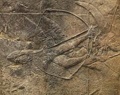 Arrow (IanSeccombe) Tags: arrow archer britishmuseum nineveh freize assyrian