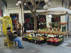Flower Seller on Ermou Street, Athens (grecomic) Tags: flowers streetphotography athens greece ermoustreet flowerseller syntagma