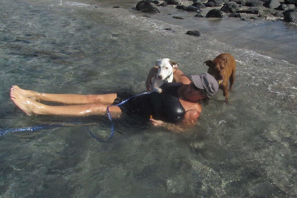 Kares Dog Rescue Hawaii