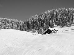 Enego2014_P2060867 copia (stegdino) Tags: winter snow cottage hut neve chalet inverno baita malga grangia ultrahero herowinner storybookwinner