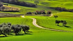 strada di campagna (Luigi Alesi) Tags: italy verde green nature way landscape nikon scenery san strada italia raw country natura severino campagna marche paesaggio macerata d90 rocchetta pollenza mygearandmepremium mygearandmebronze rambona mygearandmesilver