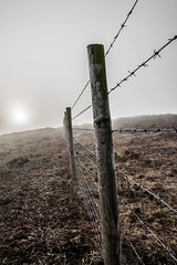 Fence into the Fog (peterkp88) Tags: mountain fog fence eerie pembrokeshire haverfordwest camrose plumbstone