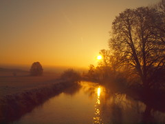 GOLDEN LIGHT IN WINTER 2017 /P2193511 (hans 1960) Tags: golden licht light sun sunrise outdoor sonne sol soleil river fluss wasser water nature natur spiegelung mirrow trees bäume landschaft landscape home heimat stille stillness ruhe harmony frost cold kalt winter