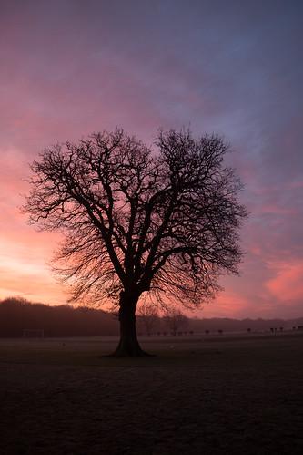 That morning 2 ©  Still ePsiLoN