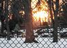 Winter Sunset Thru Playground Fence; Long Island, New York (hogophotoNY) Tags: hogophoto greatneck newyork unitedstates us