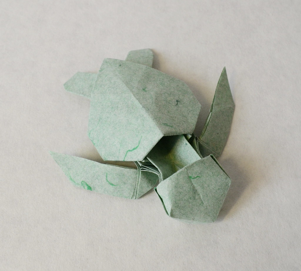 The worlds most recently posted photos of origami and turtle green sea turtle hatchling ponadr tags origami sea turtle paper green hatchling jeuxipadfo Image collections
