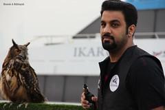 See you (Nourah.A.Edhbayah (Super Flower♥إظبيه)) Tags: طائر بومه بوم اظبيه عبدالله نوره edhbayahowl abdullah nourah kuwait q8 you see