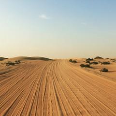 Dubai Desert (CarysBlackburn) Tags: dubai desert conservation uae sunset
