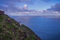 IMG_3532 (mnuckols3485) Tags: sea coast cliff landscape ocean water lighthouse makapuu trail hiking
