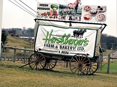 Country billboard (Lana Pahl / Country Star Images) Tags: amishcountry ohioamish