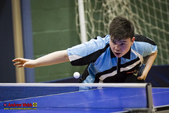 _3TT0369 (Sprocket Photography) Tags: tabletennisengland tte tabletennis seniorbritishleaguechampionship batts harlow essex urban nottinghamsycamore londonacademy drumchapelglasgow kingfisher wymondham cippenham uk normanboothrecreationcentre etta