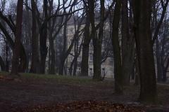 Львов Lvov (superka_01) Tags: львов lvov lwow city cityscape urban